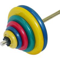 Штанга тренировочная 119,5 кг (МВ) цветная