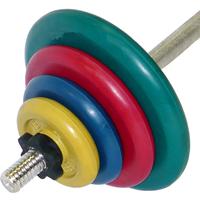 Штанга тренировочная 45,5 кг (МВ) цветная